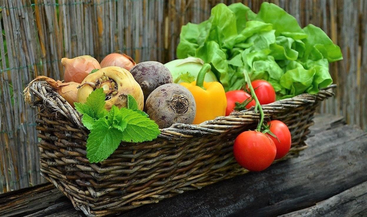 Spis sundt & Spartid og penge